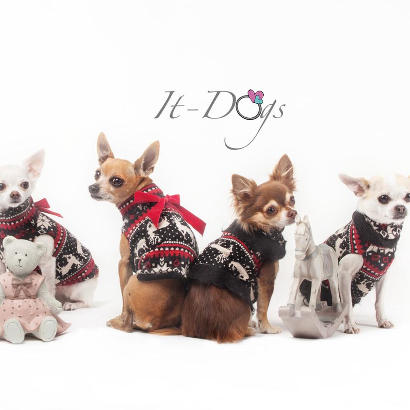 it-dogs-con-logo-8
