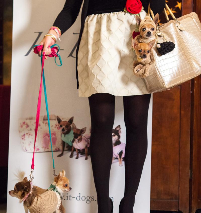 It-dogs-Natale2014-web-013