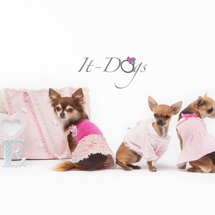 it-dogs-con-logo-6