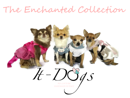 The Enchanted Collection is online!
