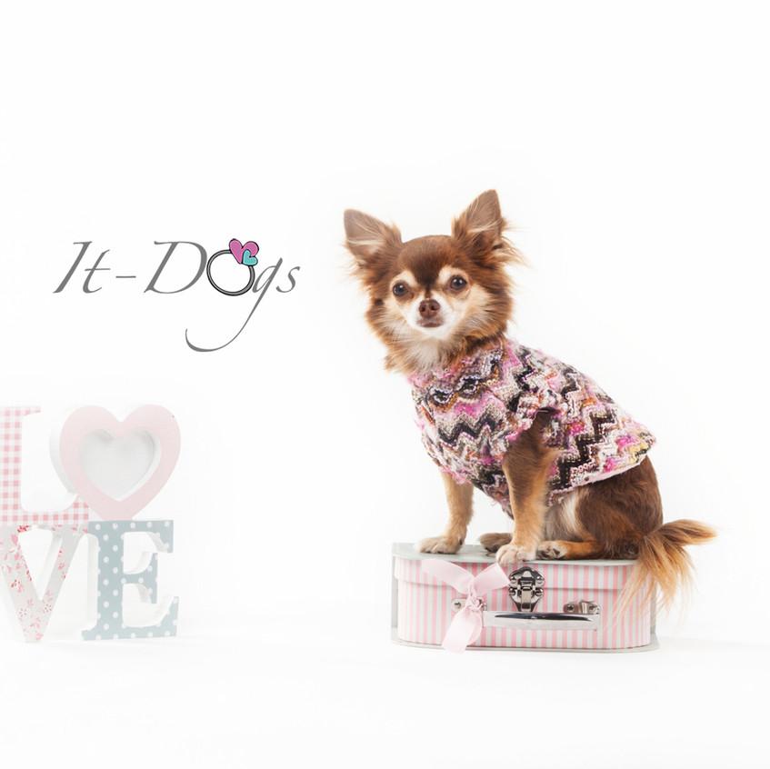 it-dogs-con-logo-15