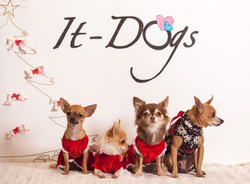 It-dogs-Natale2014-web-120.jpg