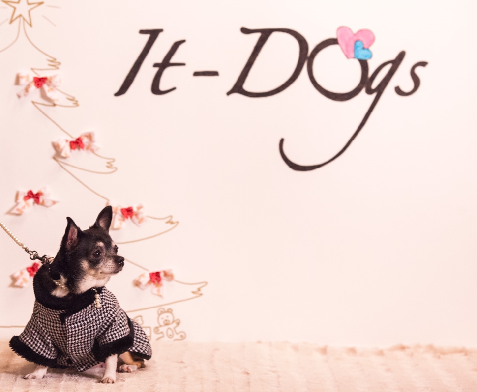 It-dogs-Natale2014-web-112.jpg