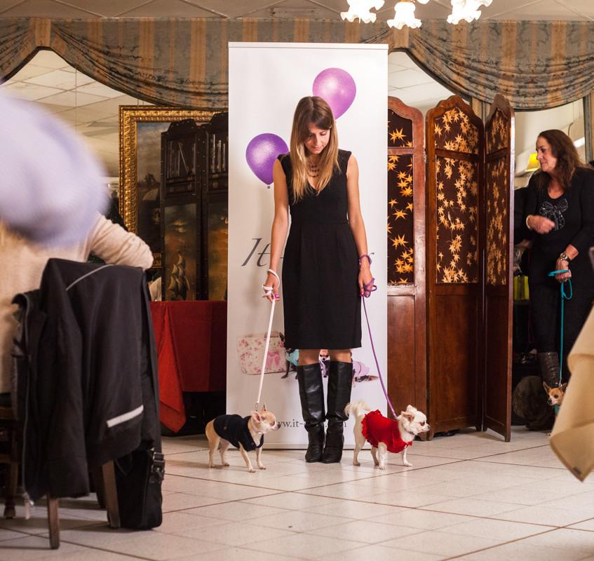 It-dogs-Natale2014-web-037