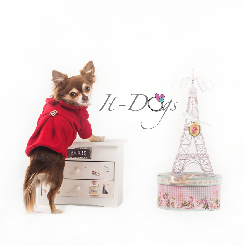 it-dogs-con-logo-17