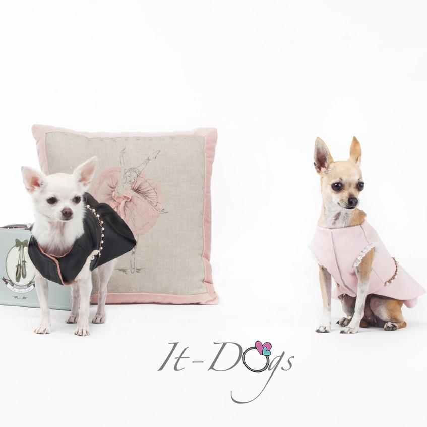 it-dogs-con-logo-3