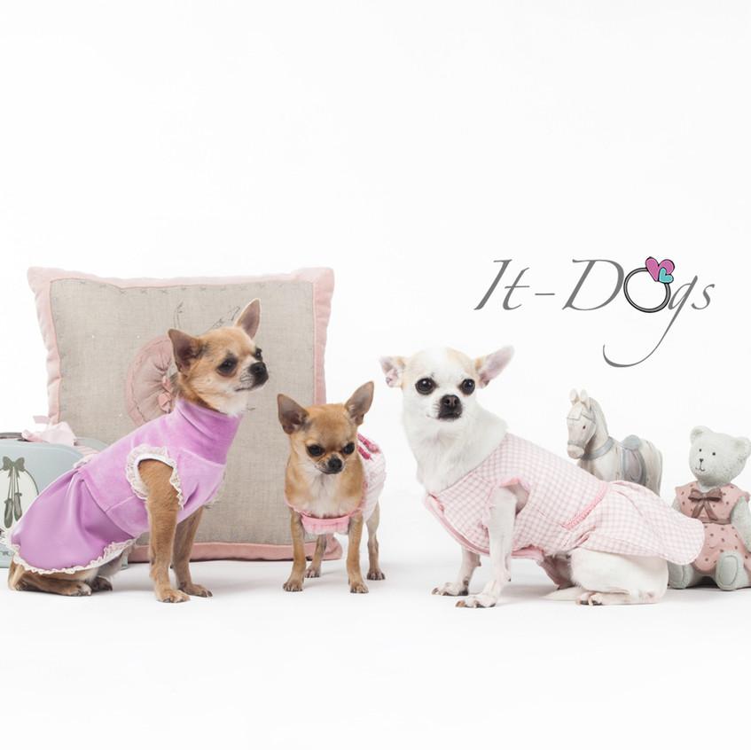 it-dogs-con-logo-2