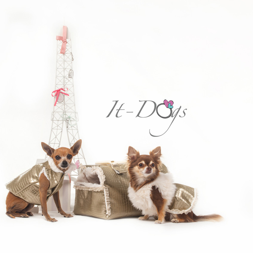 it-dogs-con-logo-10