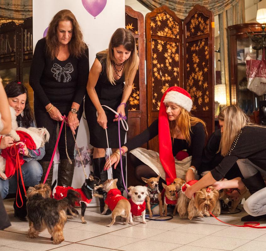 It-dogs-Natale2014-web-102