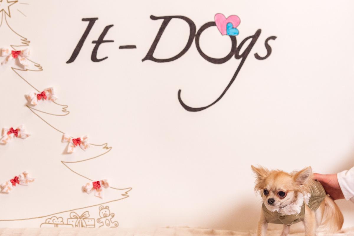It-dogs-Natale2014-web-108.jpg