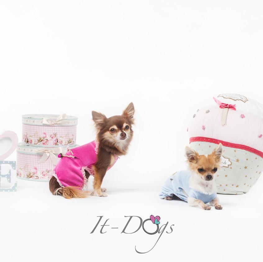 it-dogs-con-logo-4
