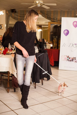 It-dogs-Natale2014-web-078.jpg