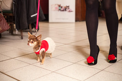 It-dogs-Natale2014-web-095.jpg