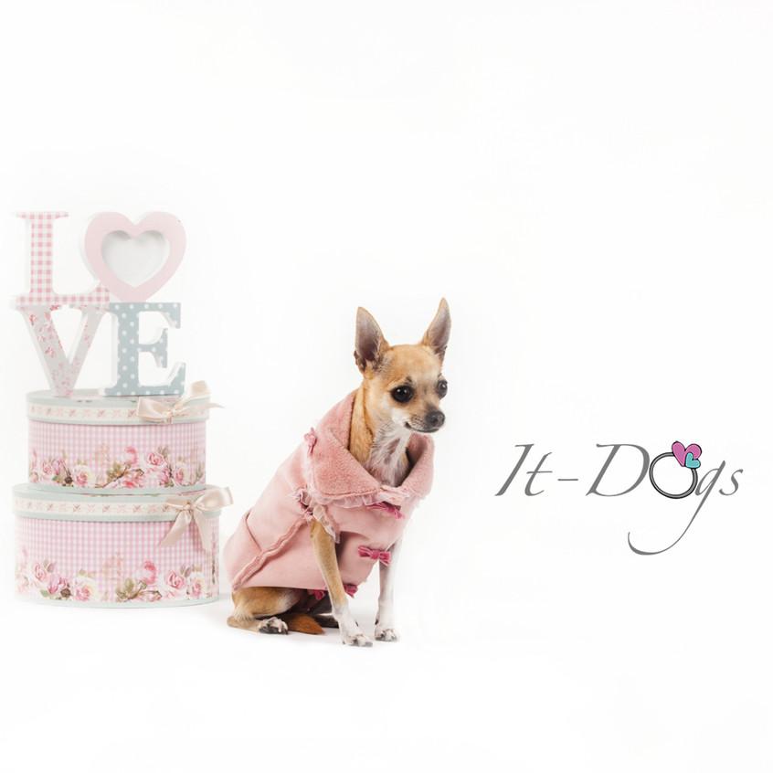 it-dogs-con-logo-13