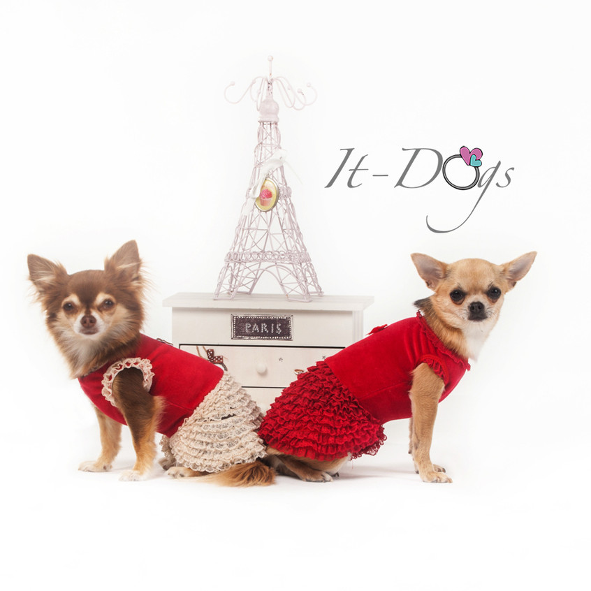 it-dogs-con-logo-9