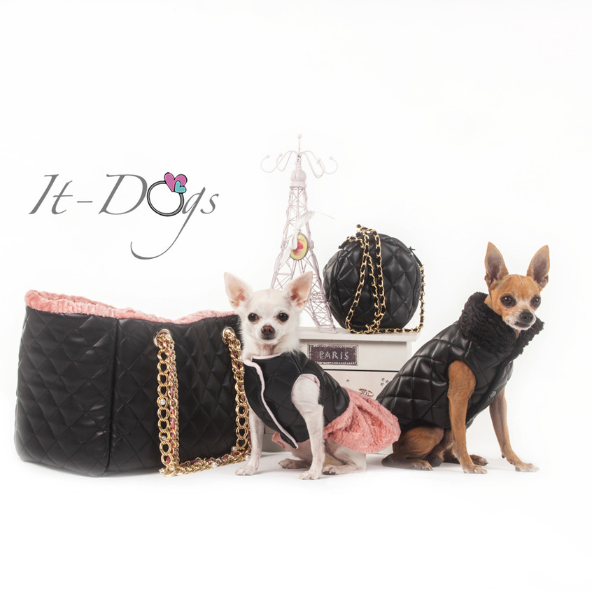 it-dogs-con-logo-12