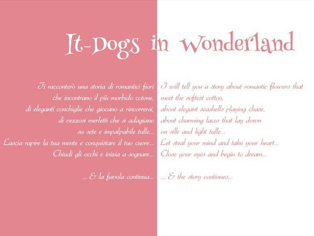 It-Dogs in Wonderland summer 2015 collection