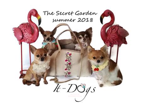 The Secret Garden Collection-summer 2018
