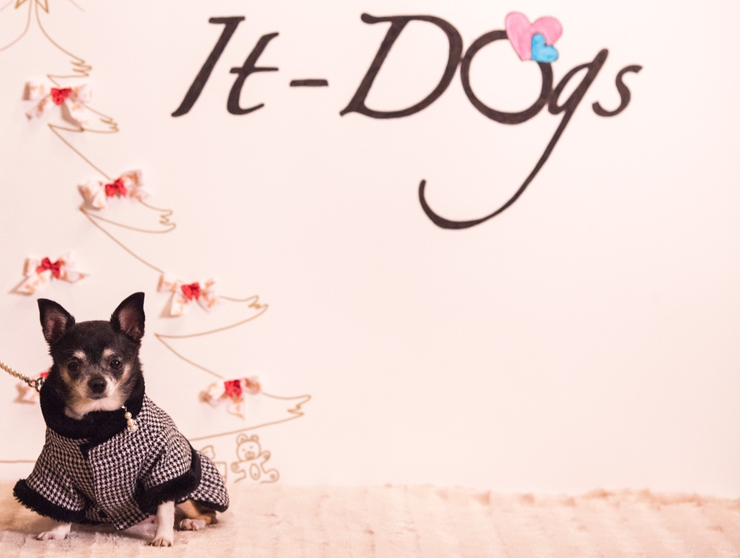 It-dogs-Natale2014-web-113.jpg