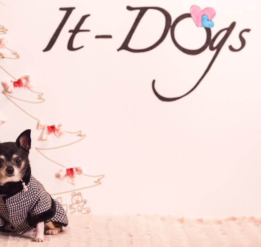 It-dogs-Natale2014-web-113