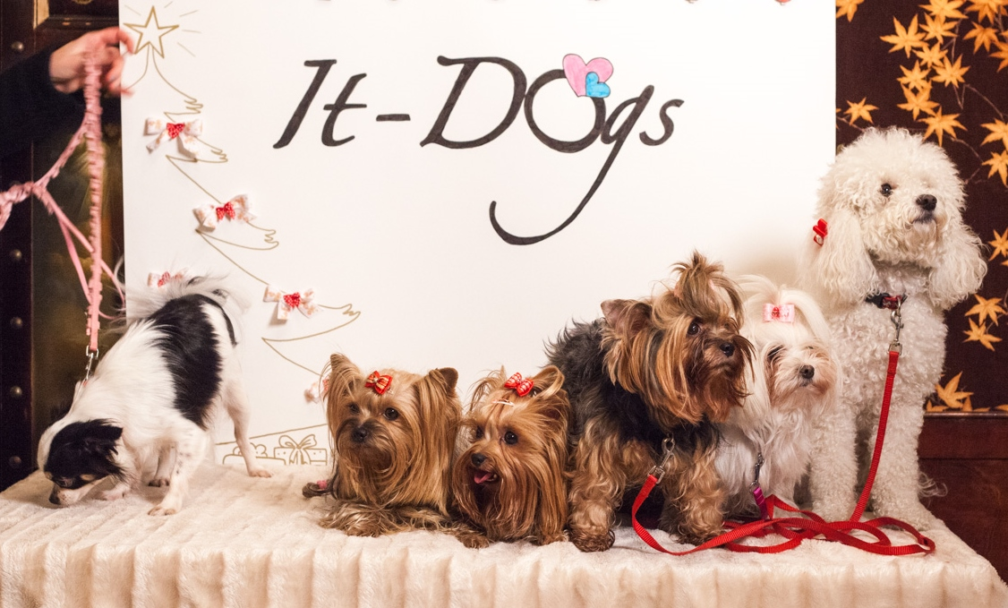 It-dogs-Natale2014-web-123.jpg