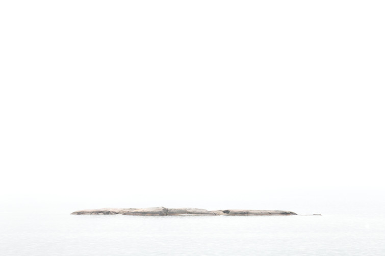 Jess McShane Photography - Fine Art - West Fox Collection - 0006.jpg