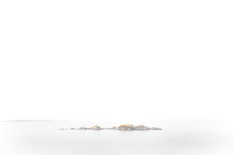Jess McShane Photography - Fine Art - West Fox Collection - 0004.jpg