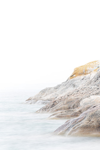 Jess McShane Photography - Fine Art - West Fox Collection - 0009.jpg