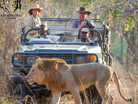 Making sure your first African Safari is one that will change your life forever
