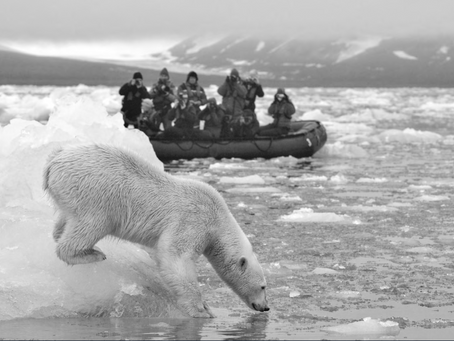 The Great Arctic Expedition