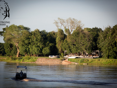 Trip Report: South Luangwa, Rivers and Rainbows