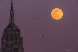 Fourth Super Snow Moon in February 2020