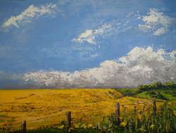 """Ripening Crops in a Dorset Field"""