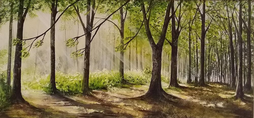 Sunlight Through Woodland 1.jpg