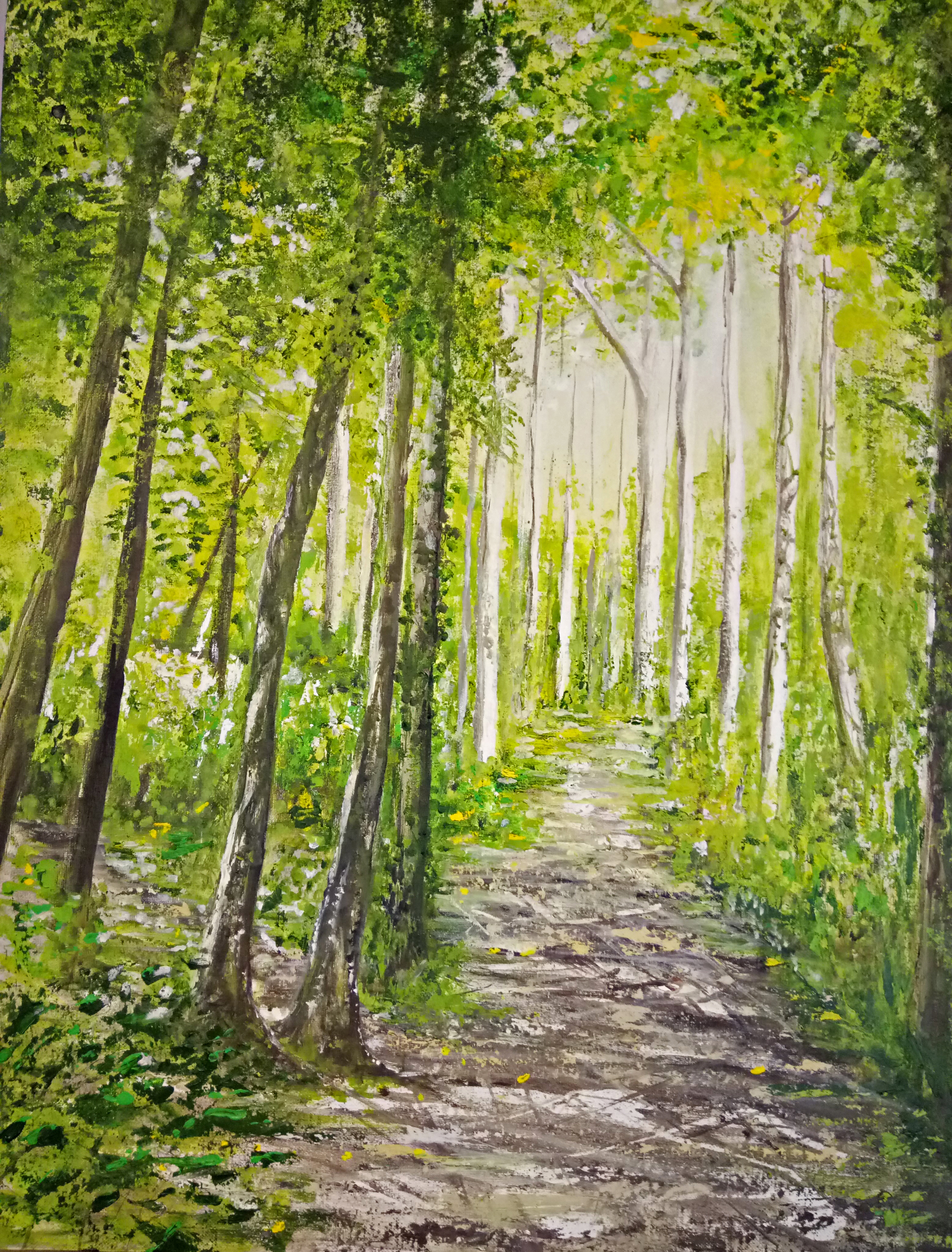 """""""May Bright - White Hill Woods"""""""
