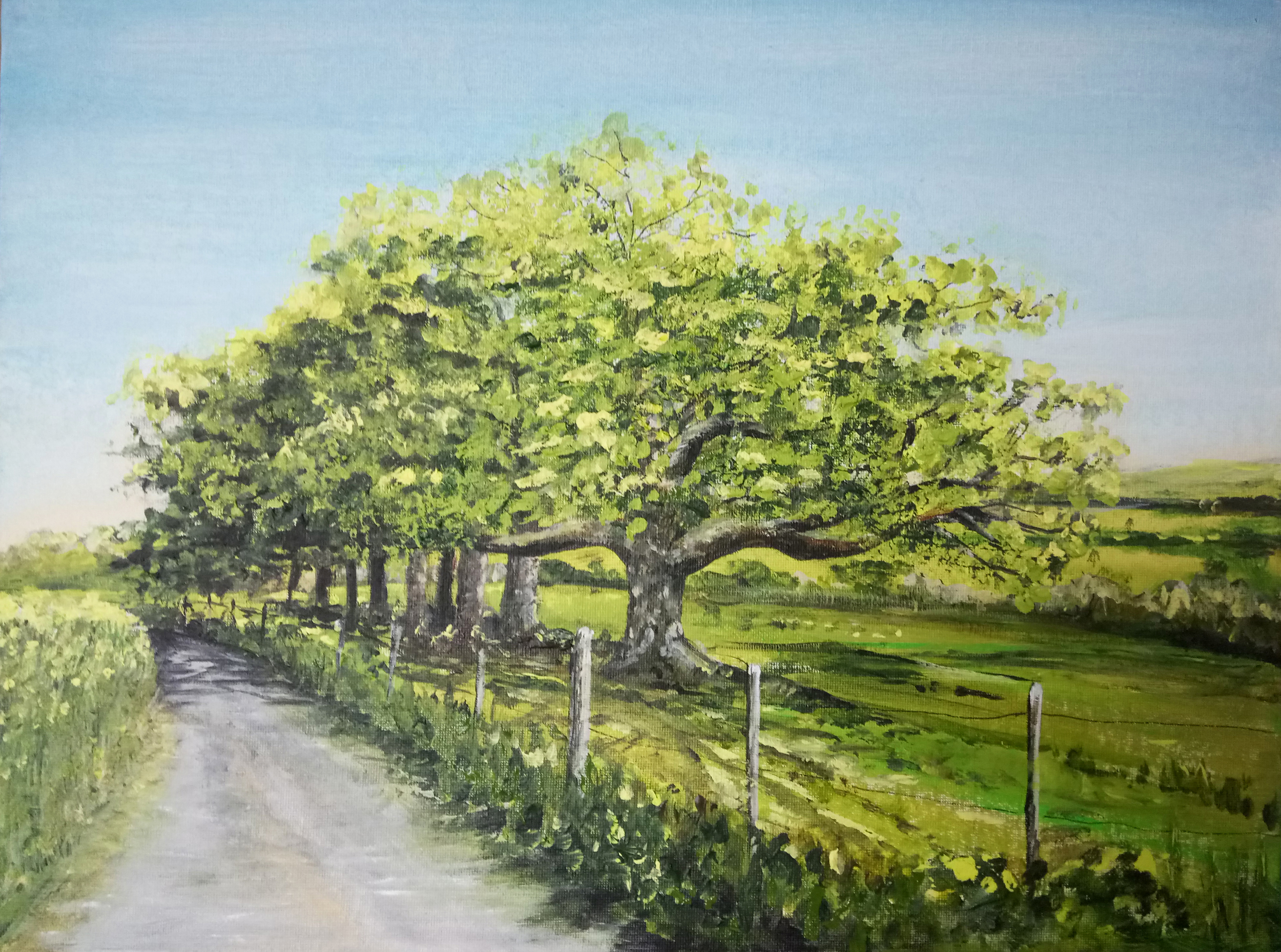 Oak Trees at the Bend
