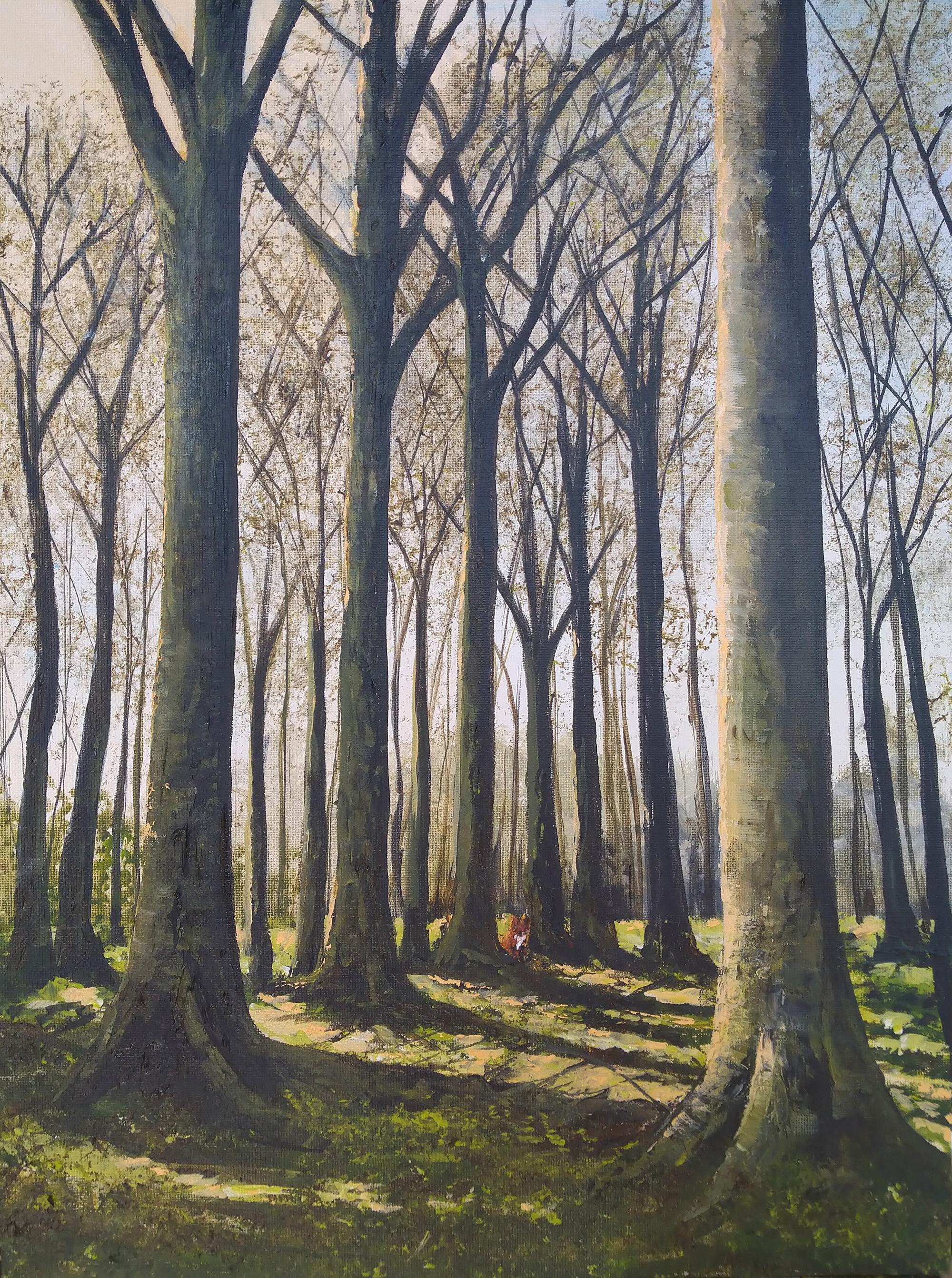 """Fox in the Woods"""