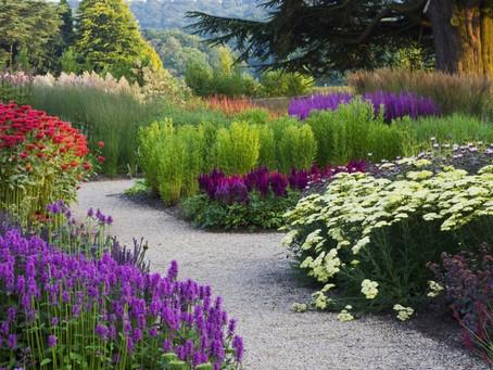 Nurture your relationship-garden this month!