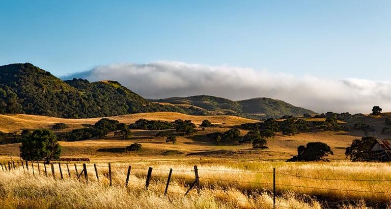 california-1596142_640.jpg