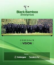 Black Bamboo Enterprises   BBR - Brochure