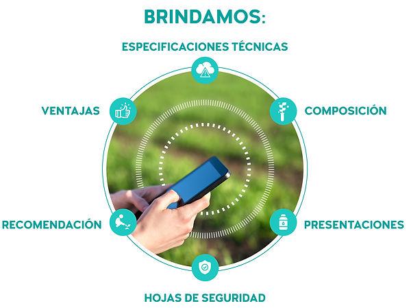 Brindamos-01.jpg