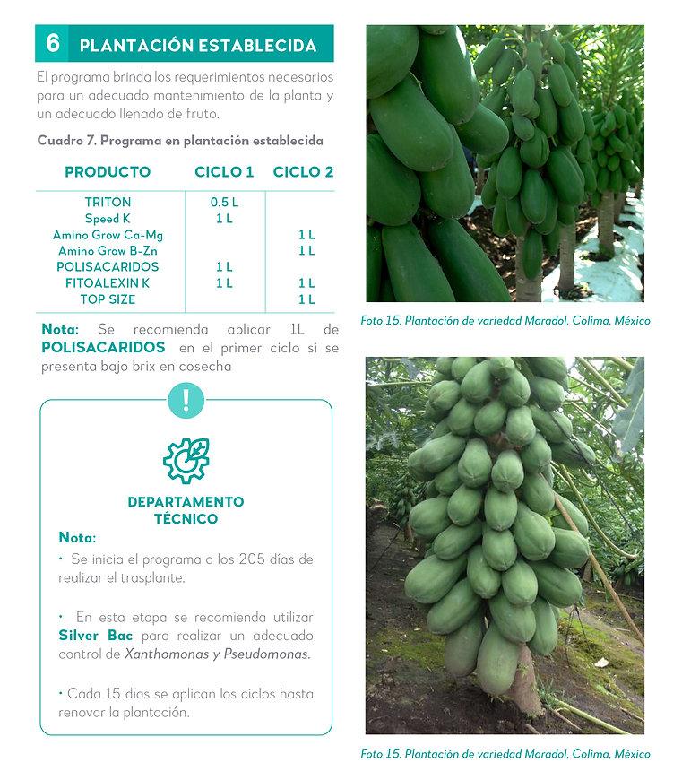 5. Nuestra experiencia en Papaya-08.jpg