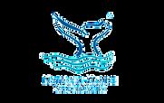 NMS_logo-300x188.png