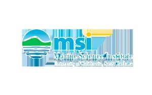 MSI_logo-300x188.png