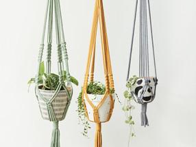 The UK businesses delivering unique house plant pots to your door