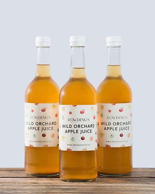 Wild Orchard apple juice med.jpg