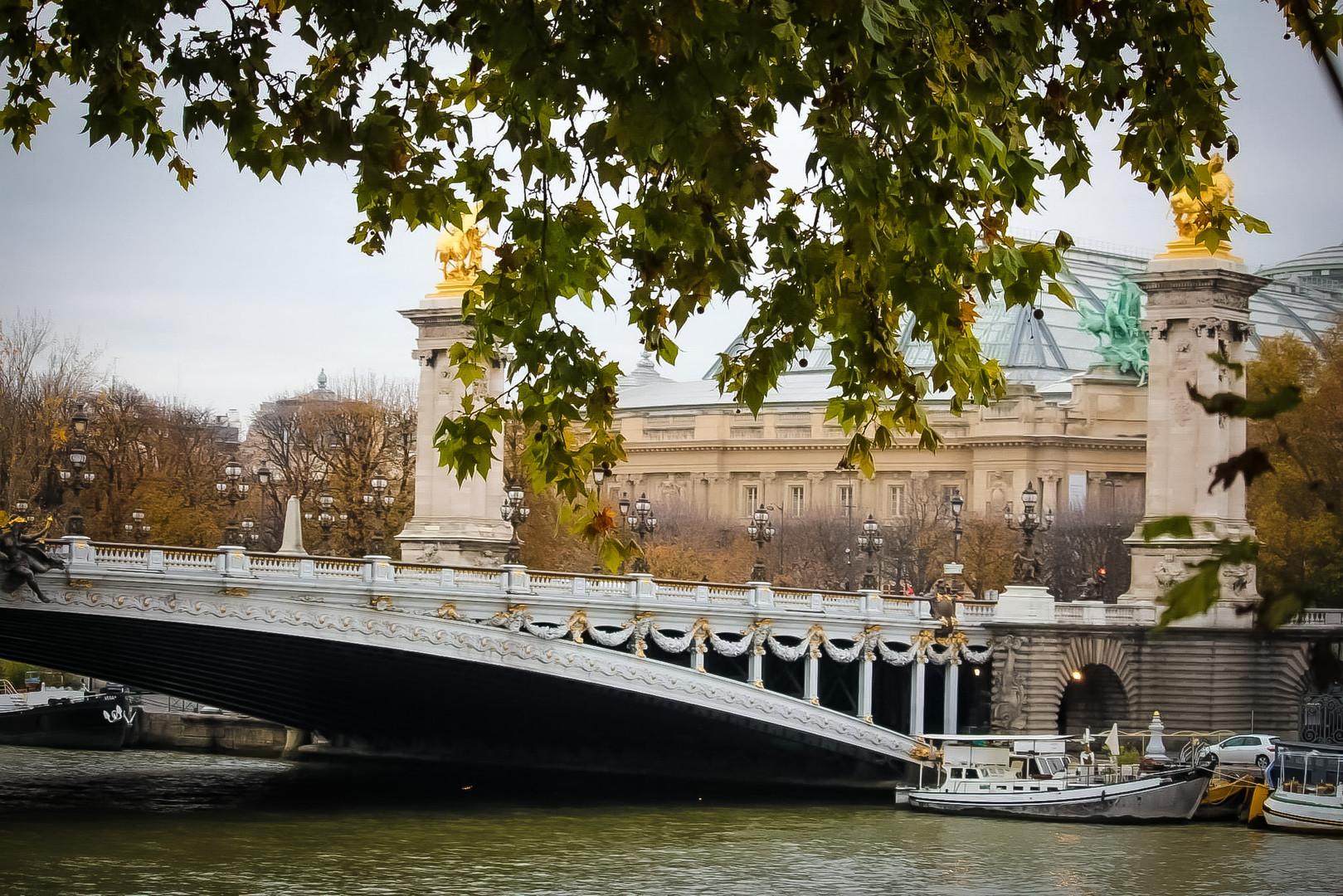 Brigde Alexendre III - Paris
