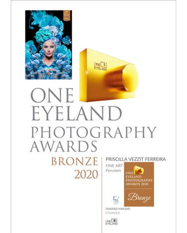 Porcelain -  Bronze Awards  2020