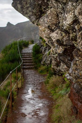 Vereda Pico do Arieiro