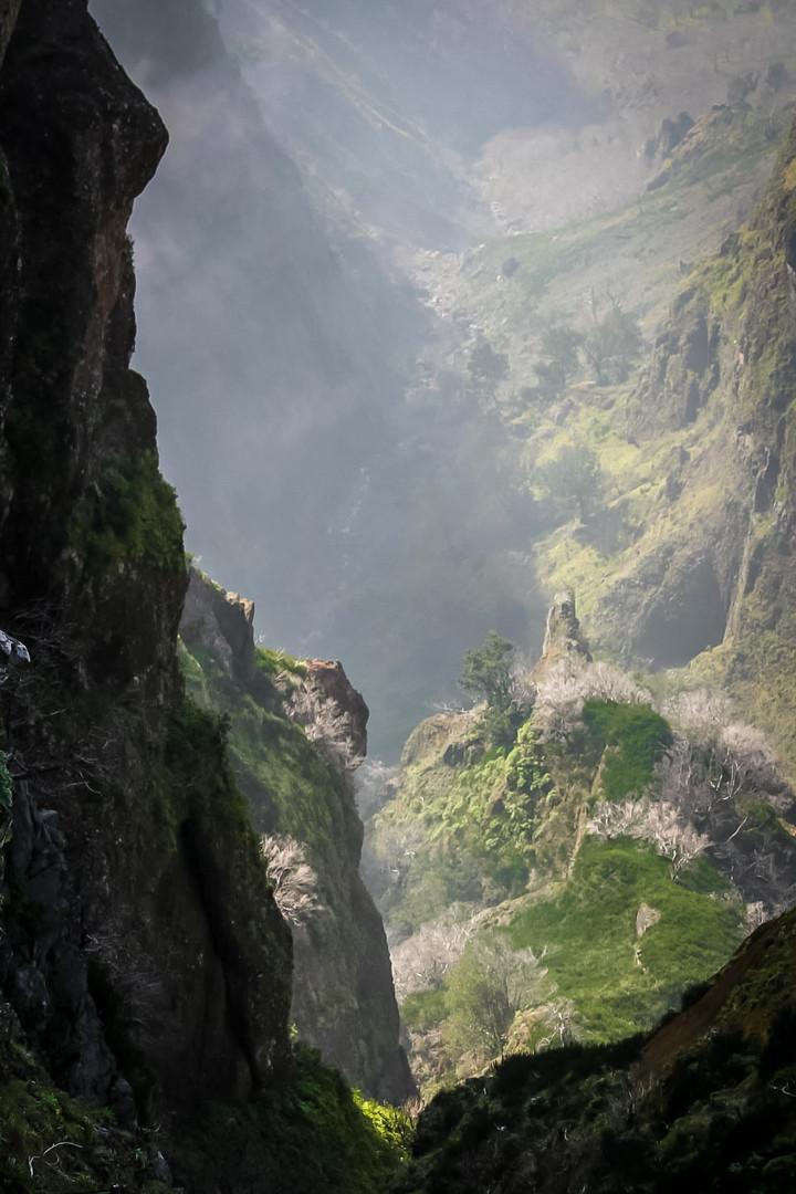Peak Trail - Madeira Island